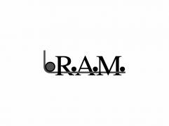 logo-RAM Comercial Schneider